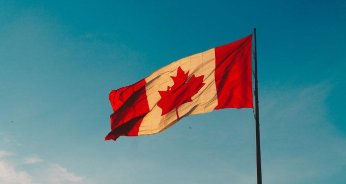Канада тестирует вакцины от коронавируса в виде таблеток и капсул